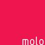 logo sponsor molo